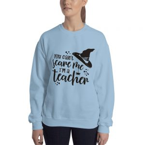 mockup 45bcebb9 300x300 - You can't scare me i'am a Teacher Sweatshirt